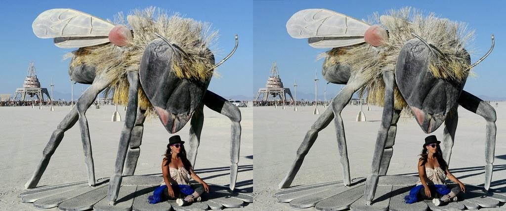 Burning Man 2019 - 3D Cross - View