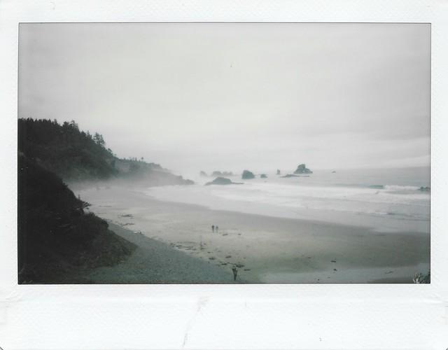 Fog on the Coast