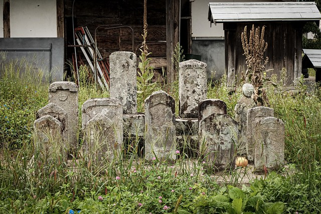 Family graveyard in the village