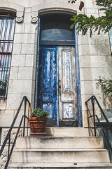 Blue door, Baltimore 2019