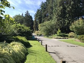 Part of the Washington Park Arboretum in Seattle