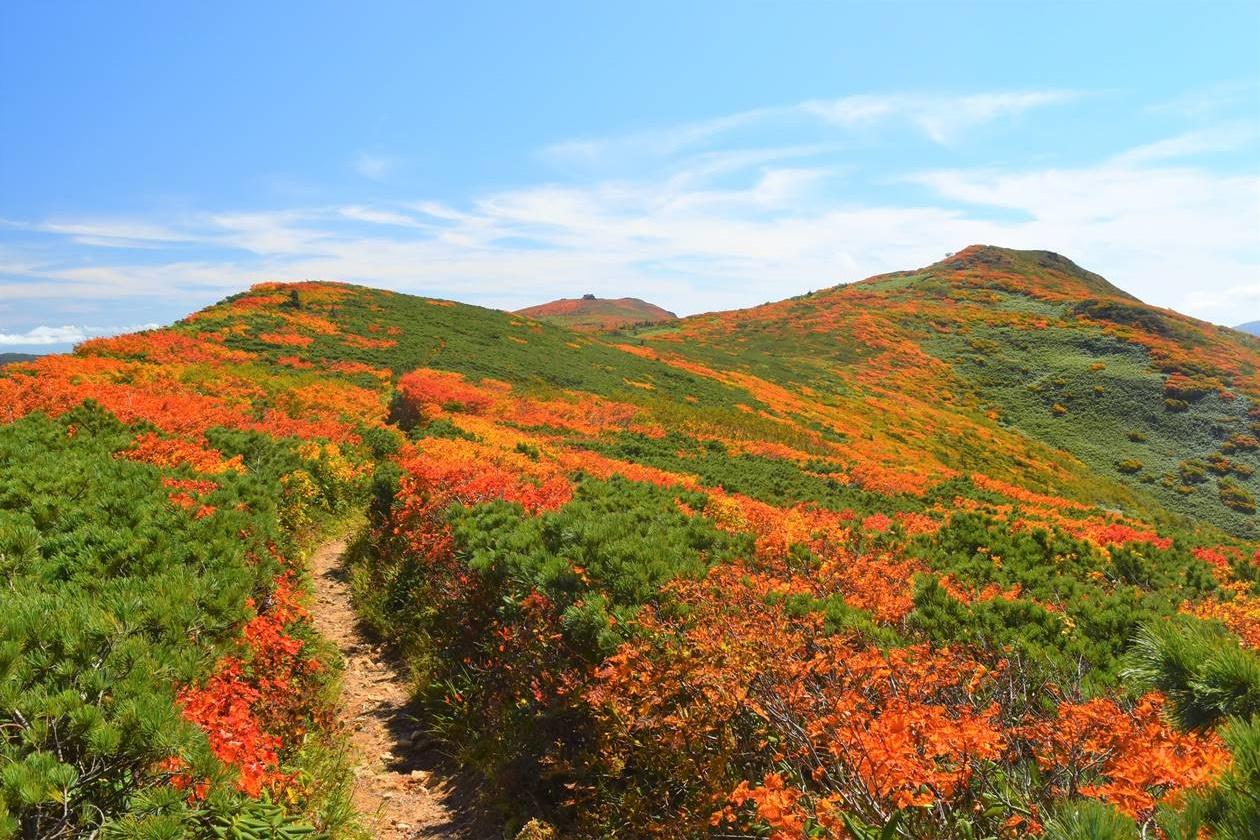 紅葉の三ツ石山