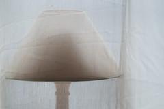 Veiled Lamp