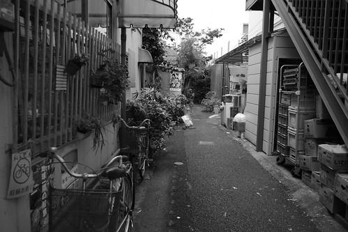 Yokohama monochrome 8