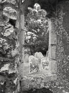 The Great Hautbois Dead