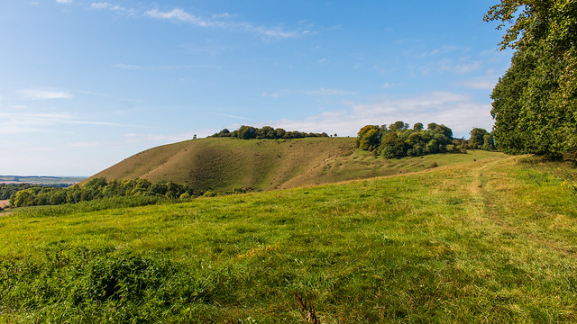 Martinsell Hill; site of an iron age hill fort