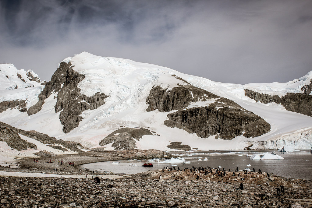 Antarctica-8