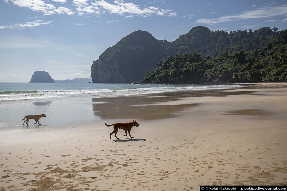 Тайский остров, где всё как тридцать лет назад люблю, сезон, вдали, Здесь, рыбаки, прекрасен, Впрочем, Сейчас, добраться, острова, Таиланде, несколько, ловят, можно, назад, континента, остров, Когда, здесь, стороны