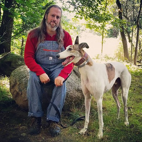 Adventurers, sitting-on-rock edition #Cane #dogsofinstagram #greyhound #greyhoundsofinstagram #ChestnutRidge #wny #orchardpark #summer #nature #hiking #trees #overalls #dungarees #biboveralls #vintage #pointerbrand #lckingmfg #hickorystripe #denimoveralls