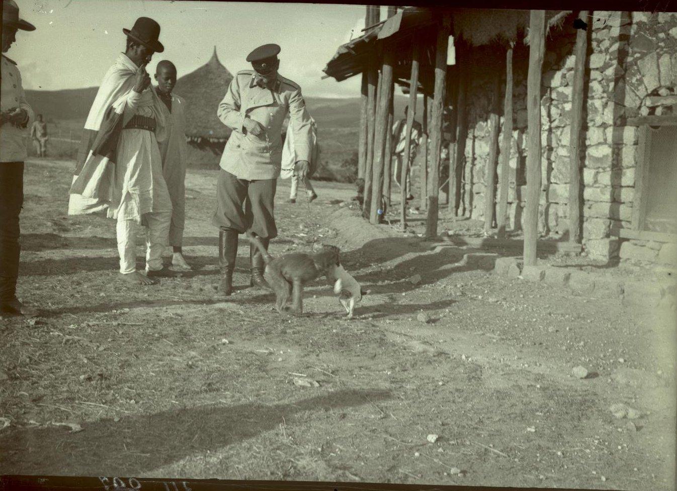 311. 1899. Абиссиния, Аддис-Абеба. Хирург Бровцин с обезъянкой