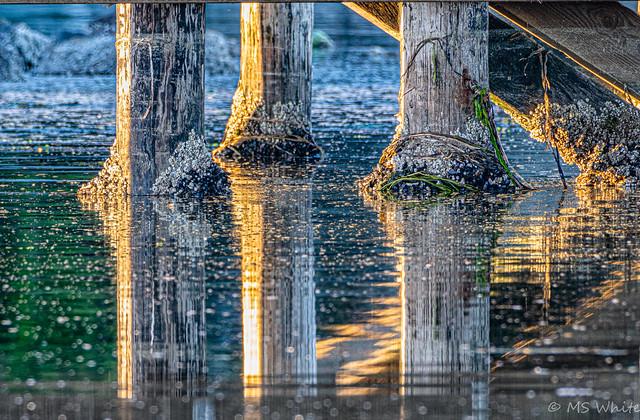 Art under the Bridge #2