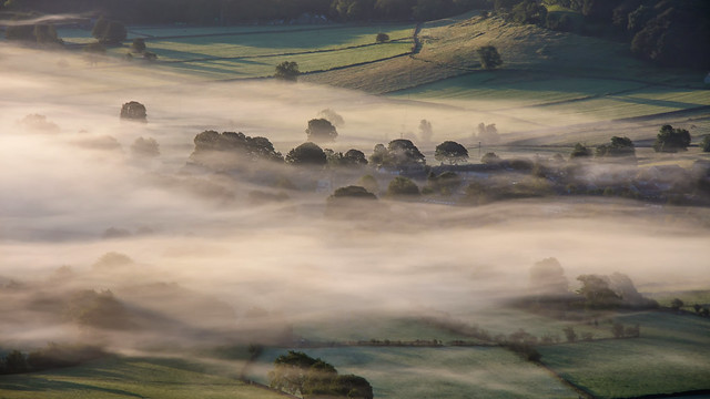 A Land of Green and Mist