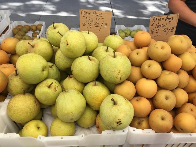 """Asian Pears - """"Shin Li"""""""