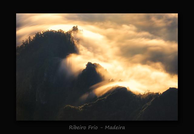 Ribeiro Frio