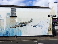 Mural in Cheltenham (for Cheltenham Paint Festival)