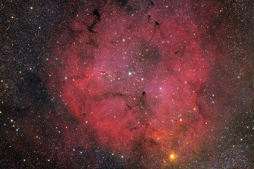 IC 1396 - Elephant's Trunk Nebula | by ZeSly