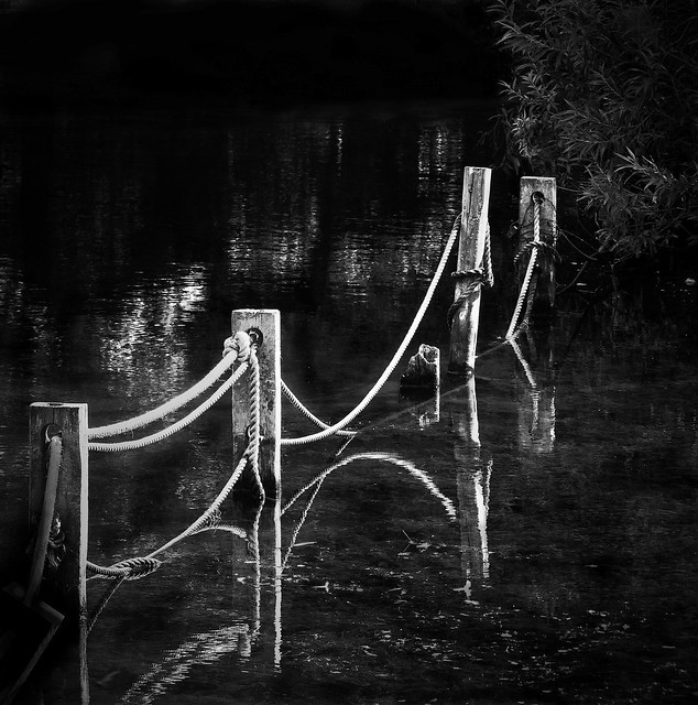 Posts in the lake