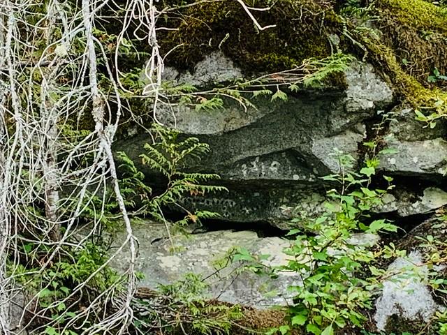Fraser Valley-18