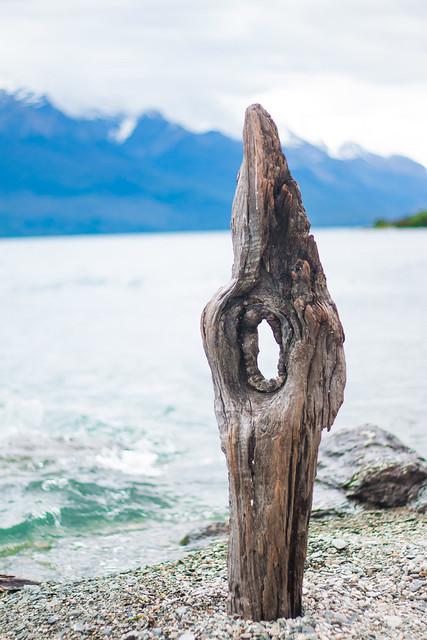 Driftwood [Explored]