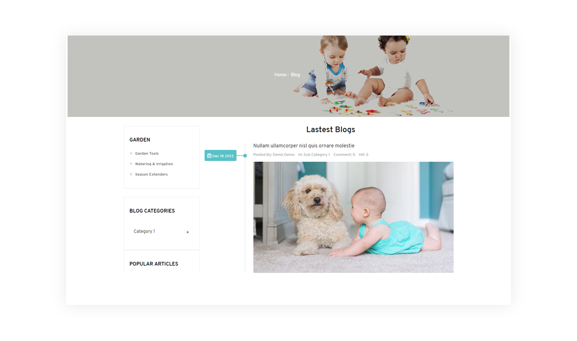 Beautiful Blog Template