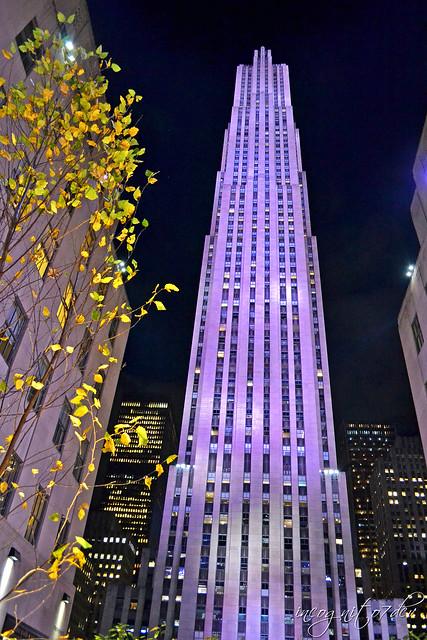 Top of the Rock Comcast Skyscraper Building Rockefeller Center & Plaza Manhattan New York City NY P00311 DSC_2740