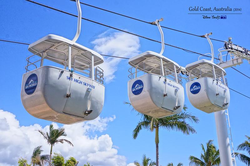 Gold Coast Sea World 03