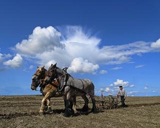 a farmer is plowing his field