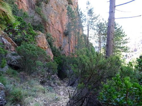 Le chemin en amont de la face W de Punta Russa