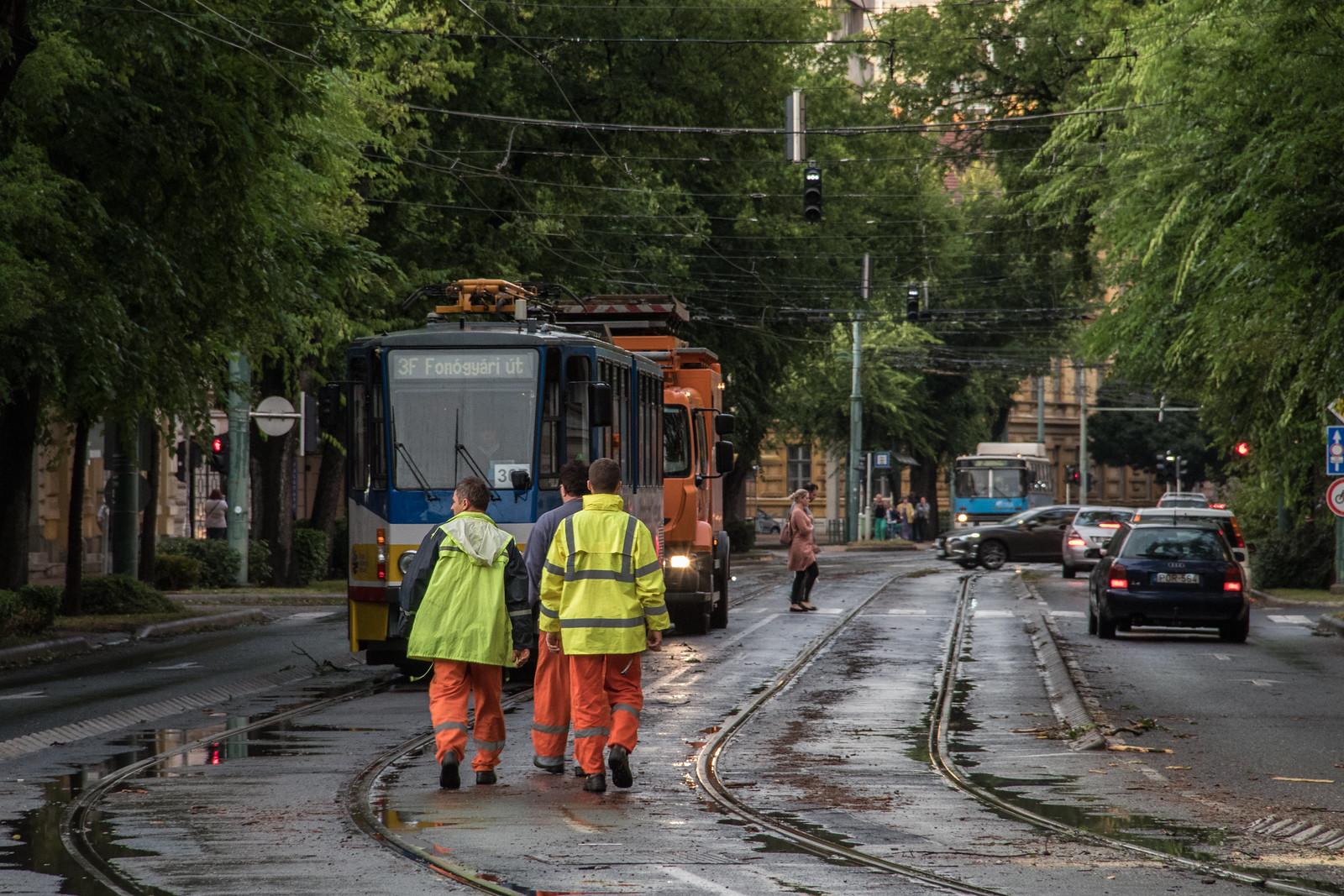 Bejártuk a vihar sújtotta Szegedet, nagyok a károk