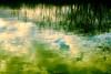 I Am A Lake by Branko Mikić