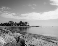 Odiorne Point BW