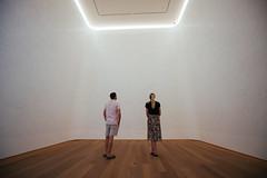 Empty Room Dilettantes