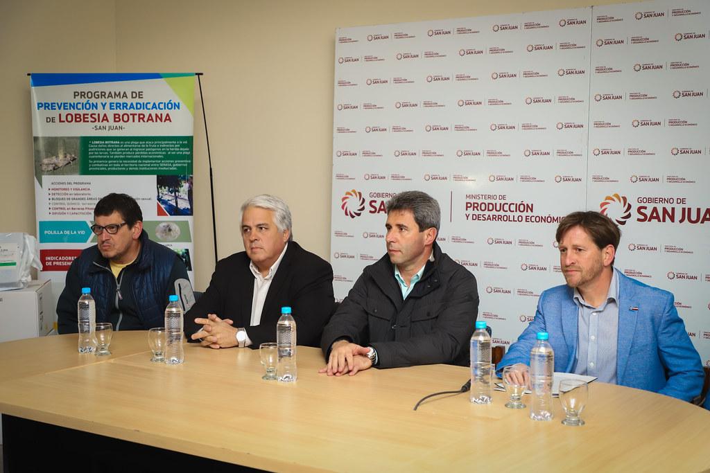 2019-09-09 PRENSA: Lanzamiento de la Campaña de Prevención y Erradicación de Lobesia Botrana