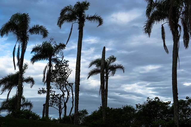 Sunset, Bombinhas SC, Brazil