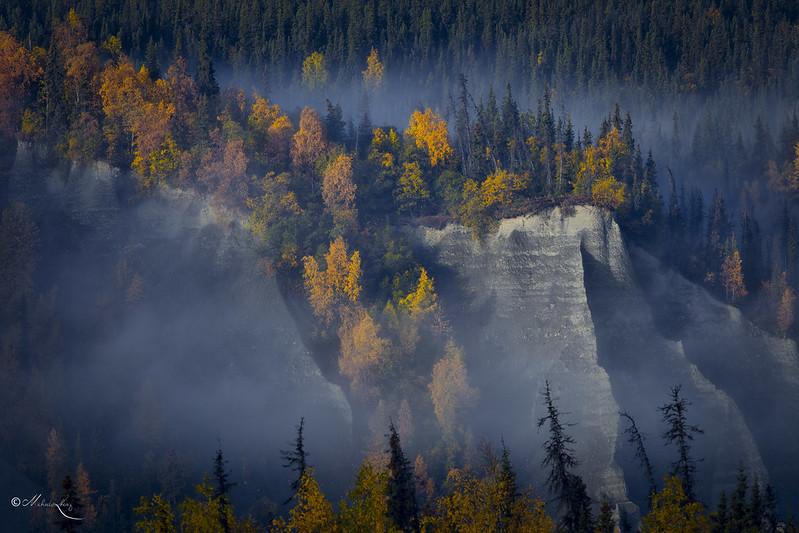 Fall in Alaska #1