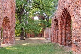 Ruine der Abteikirche Kloster Eldena