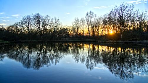 daisynook countrypark sammysbasin sunset reflection trees failsworth