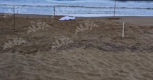 cadavere in spiaggia Castellabate