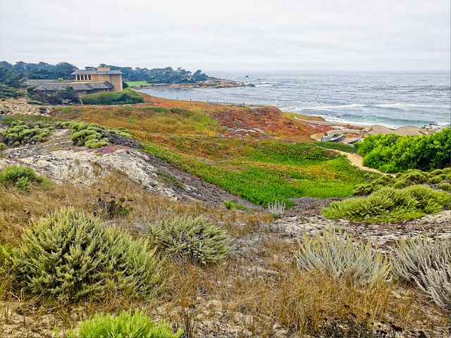 Southwest View from Spyglass Hill 4th Tee (3)