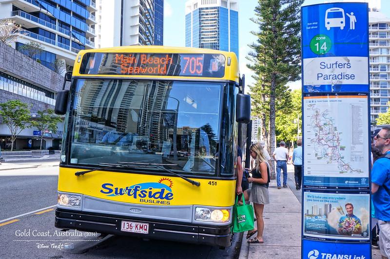 Gold Coast Bus to Sea World
