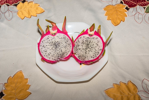 Our First Dragonfruit of 2019