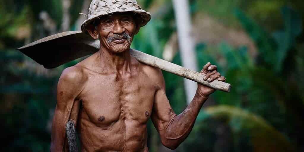 un-lien-entre-le-microbiome-et-la-perte-musculaire-personnes-âgées