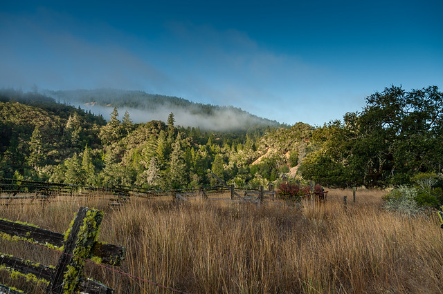 Abandoned corral near Boonville, Northern California