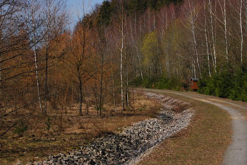 Vorfrühling im Luchsbachtal.