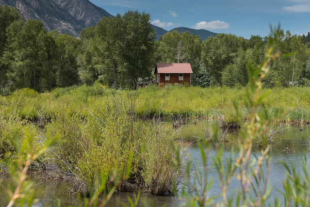 Remote cabin in the wilderness by a pond