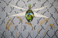 Dragonfly graffiti