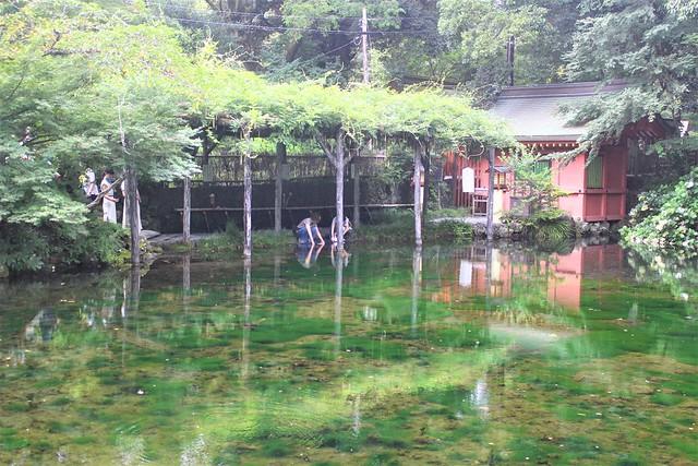 fujisanhongu-gosyuin051