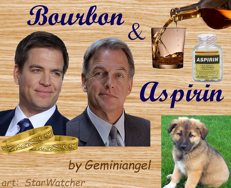 Top right, bottle pouring bourbon into a glass.  Bottle of aspirin next to glass.  Middle left, headshots of Tony & Gibbs, in suits, look at each other from sides of eyes.  Two gold engraved rings in front of them.  Bottom right, fluffy puppy on grass.  Text reads 'Bourbon & Aspirin'.