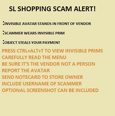 INVISIBLE SCAMMER