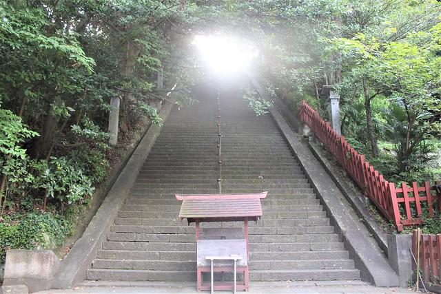 shizuokasengen-gosyuin029